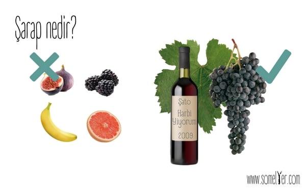 Şarap Nedir?