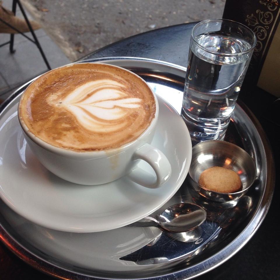 5-cafe-sapiens