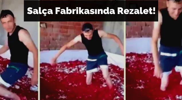 Salça Fabrikasında Rezalet
