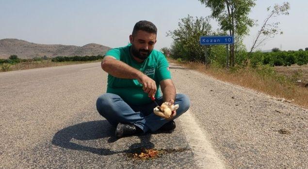 asfaltta sucuklu yumurta
