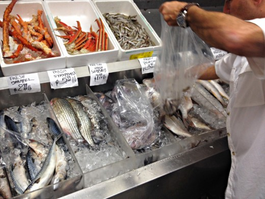 astoria-seafood-spyro-chriss-queens-new-york-hand-picked-fishes