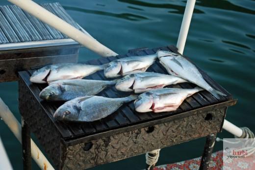 Izgara Balık, Dolunayda Tekne Turu, Dalyan, Muğla