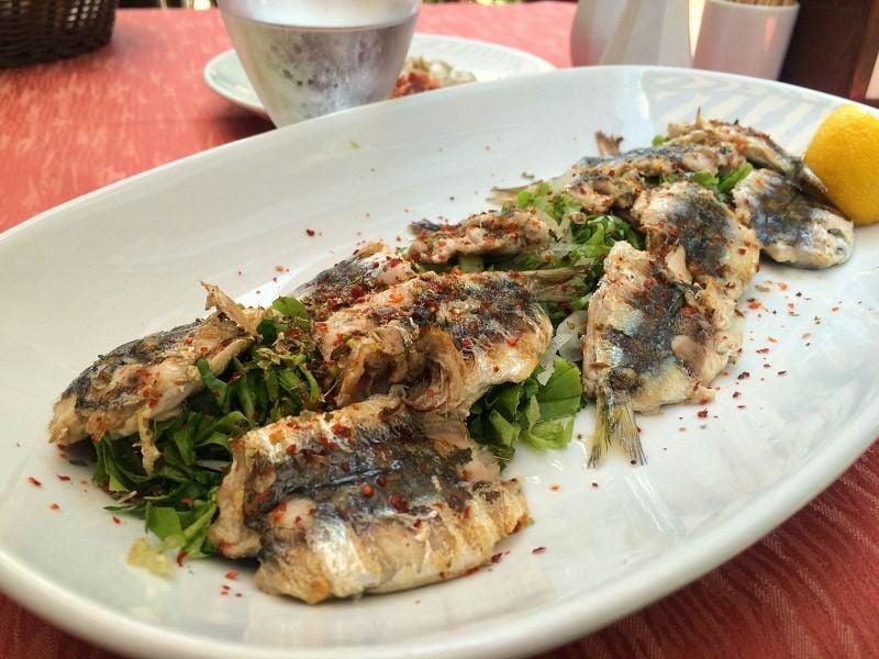 Kadıköy'de Sardalya Nerede Yenir? Balıkçı Lokantası