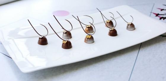 pralin-dunya-cikolata-ustasi
