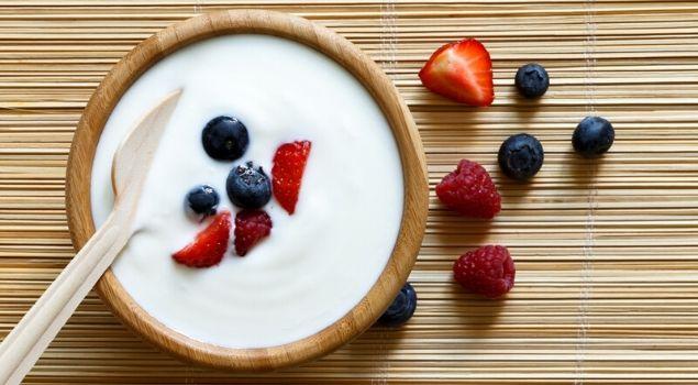 probiyotik gıdalar nelerdir